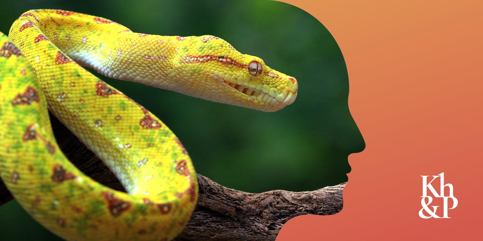 6 способов заинтересовать рептильный мозг вашего клиента
